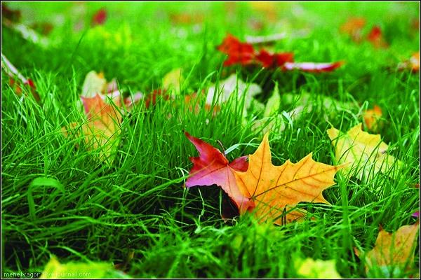 октябрь осень пейзаж обои на рабочий стол
